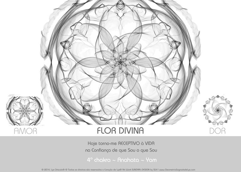 4_FLOR_DIVINA