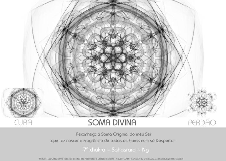 7_SOMA DIVINA