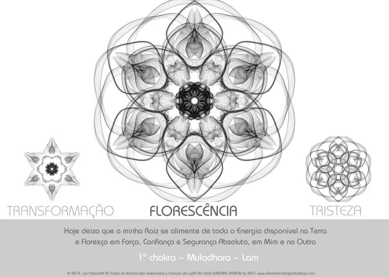 1_FLORESCENCIA